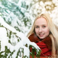 Зимний лес прекрасен :: Екатерина Гриб