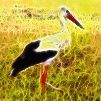 Пантеистический этюд с птицей :: Руслан Тимошенко
