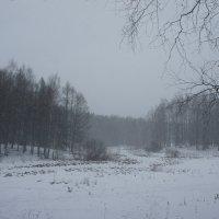 Расстилает метель снеговую постель, серебристая кружится мгла... :: Елена Павлова (Смолова)