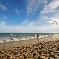 Вьетнамские каникулы. Пляж. Ветренно :: Маргарита
