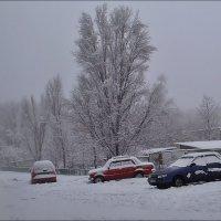 Зимний день :: Нина Корешкова