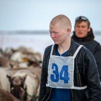 День оленевода :: Фёдор Воронов