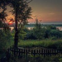 ТОПОЛЯ У РЕКИ :: Sergey Komarov