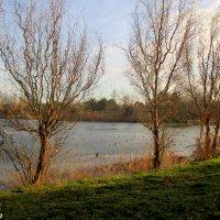 На берегу реки Анапки :: Нина Бутко
