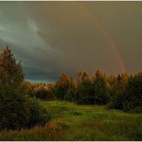Перед дождём. :: Олег Осипов