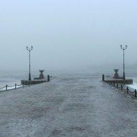 В тумане :: Сергей Григорьев