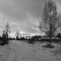 Зимний рассвет :: Константин Поляков