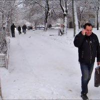 Зимой и летом одним цветом :: Нина Корешкова