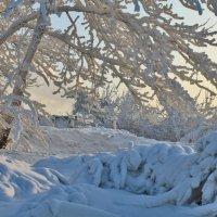 Зима укутала :: Екатерина Торганская