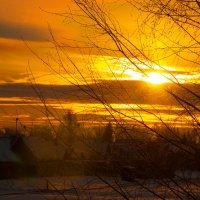 Морозным утром :: Михаил Гажур