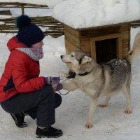 Любовь с первого взгляда :: Полина Бесчастнова