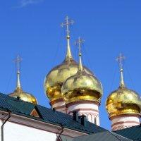 Купола храма :: Наталья