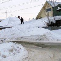 Сколько снегу намело ! :: Мила Бовкун