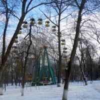 Январь в парке... :: Тамара (st.tamara)