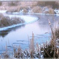 Река Усманка.Зима :: Максим Минаков