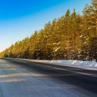 Зимняя дорога :: Сергей Говорков