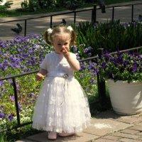 Маленькая принцесса. :: Владимир Драгунский