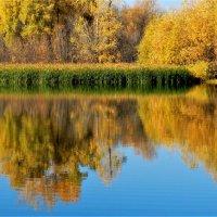 Осенняя благодать :: Николай Сапегин