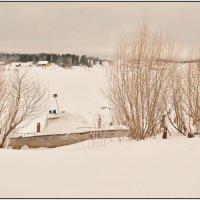 Зимняя спячка. :: Марина Никулина