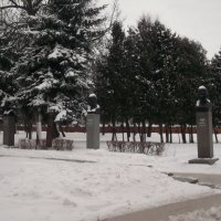 Парк зимой :: Svetlana Lyaxovich