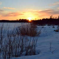 Солнце взойдёт!!! :: Ольга
