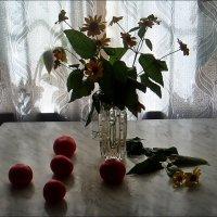 Помидоры и гелиопсис :: Нина Корешкова