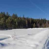 Зимняя дорога :: Анатолий Иргл