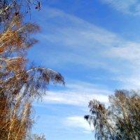..Небо стало опять голубое ! :: Мила Бовкун