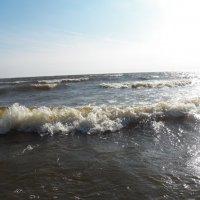 За волною волна... :: Регина Пупач