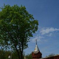 Егорьевск :: Светлана Ларионова