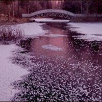 И речка подо льдом блестит... :: Светлана