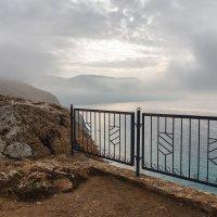 Утренний туман. :: Mihail Mihaylov