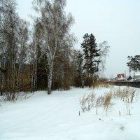 Зимний пейзаж. :: Мила Бовкун
