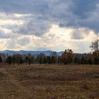 Чернильные облака осени :: Екатерина Торганская
