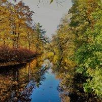 Справа лето,слева осень... :: Sergey Gordoff