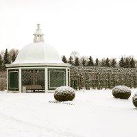 Петергоф в снегу :: Петр