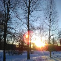 Зимний пейзаж. Солнечный день в феврале. (Санкт-Петербург). :: Светлана Калмыкова