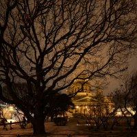 Туманный вечер :: Наталья Левина