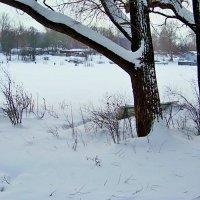 После снегопада. :: Miko Baltiyskiy