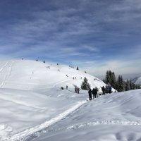 Туристы шли, купаясь в чистейшем морозном воздухе и солнечных лучах, шалея от свежести и тишины. :: Anna Gornostayeva