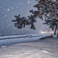 Зимой.... :: Александр Криулин