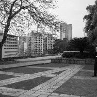 Зимний день в Макао :: Sofia Rakitskaia