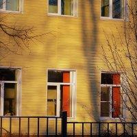 Школьные окна в каникулы :: Фотогруппа Весна.