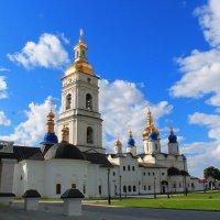 Софийско-Успенский кафедральный собор :: Наталья Метелёва
