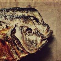 Рыбный день :: Ольга Мальцева