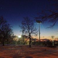 Зимний вечер. :: Виктория Чурилова