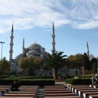 Cтамбул.Голубая мечеть. :: Сергей Тумарев
