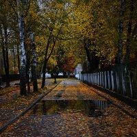 Осень :: Вера Аксёнова