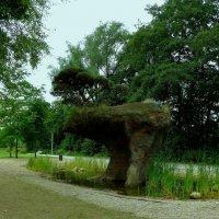 Парк в районе Вильгельмсбург (серия). Чёрная сосна-бонсай (4м) на камне-медведе :: Nina Yudicheva