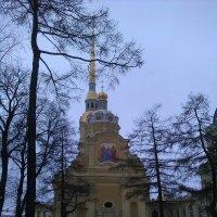 Петропавловская крепость. (Санкт-Петербург). :: Светлана Калмыкова